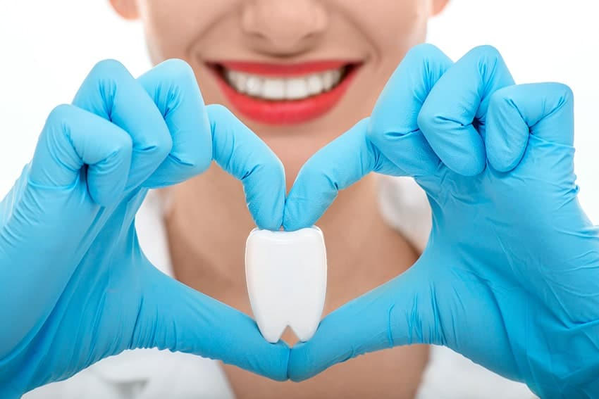 Attractive female dentist placing her hands in a heart shape while holding an oversized tooth. Brushing your teeth and having a routine visit to your dentist can reduce your heart risks.